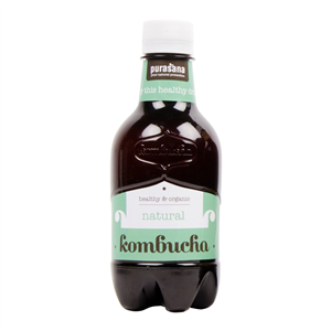 Kombucha BIO 330ml natural